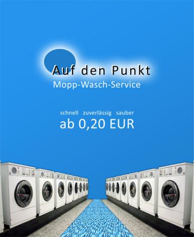 Auf den Punkt Mopp Wäsche Reinigung